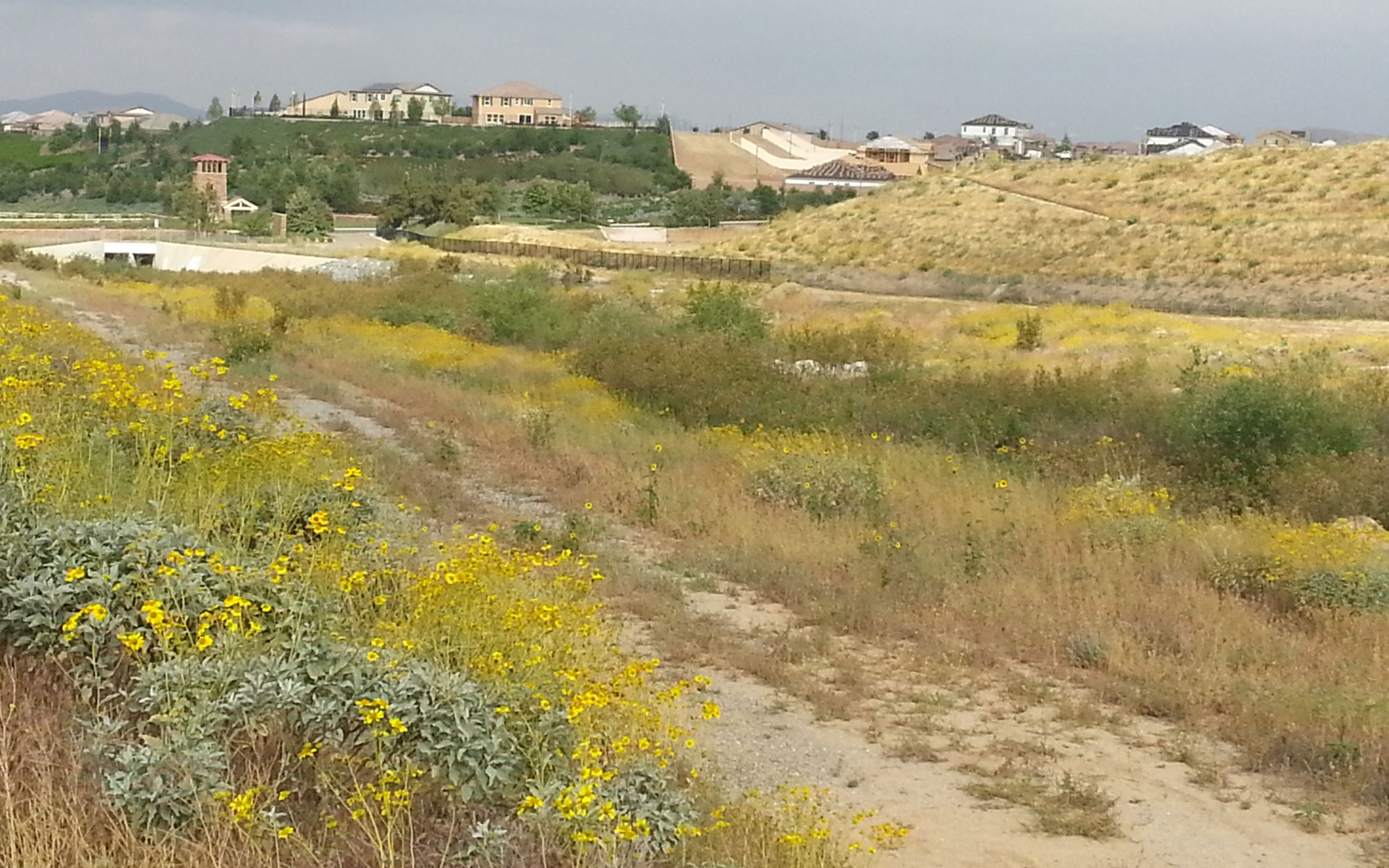 Sage managed design and construction of this large flood control channel, obtained regulatory permits, and enhanced vegetation