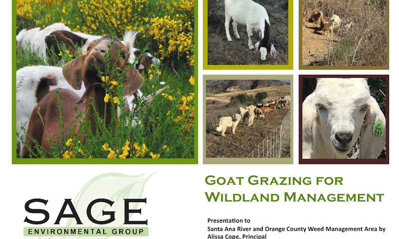 Goat Grazing for Wildland Management Presentation Jan 17 2019 Sage Environmental Group