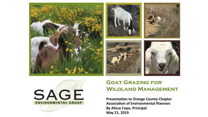 Goat Grazing for Wildland Management - OCAEP May 21 2019