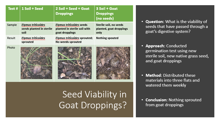 Seed viability in goat droppings