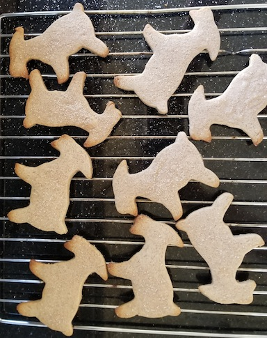 goat cookies cooling on rack